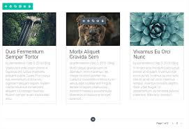The Divi Blog Module | Elegant Themes Documentation