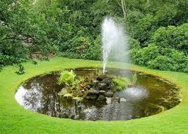 garden pond pumps and hoses brian