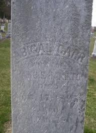 Abigail Carr Hamilton (1827-1895) - Find A Grave Memorial