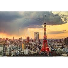 Skyline Of Tokyo Japan At Tokyo Tower Print Wall Art By Seanpavonephoto Walmart Com