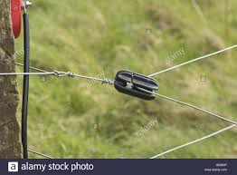 Sturdy Sleep Corner Post With Wires And Insulators For And Electric Stock Photo Alamy