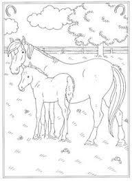 83 Beste Afbeeldingen Van Kleurplaten Kleurplaten Paarden En