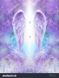 angel wings twitter backgrounds on