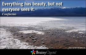 brainy quote everything has beauty but not everyone sees it