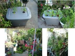 planting a garden on top of concrete