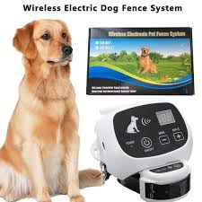 Carepetmost Wireless Electric Dog Fence System Outdoor Invisible Wireless Dog Fence Containment System 550yd Remote C Wireless Dog Fence Dog Fence Modern Fence
