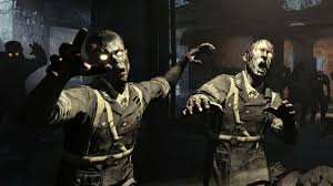 Call of Duty Zombies - the accidental ...