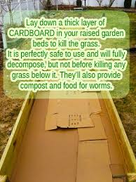 create a raised garden bed