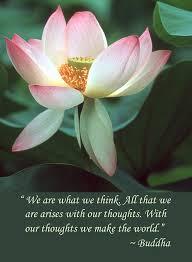 lotus flower buddha quote by chris scroggins buddha quote lotus