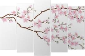 Horizontal Branch Of Cherry Blossoms Realistic Vector Illustration On Isolated Background Wall Mural Pixers We Live To Change