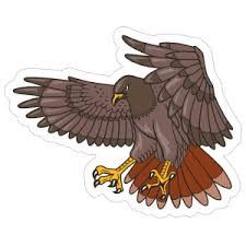 Hawk Car Stickers Decals Made With Premium Vinyl Material