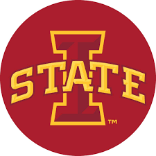Amazon Com Fannut Com Iowa State Cyclones Isu Rr 4 Round Vinyl Decal Auto Home Window Glass University Of Sports Outdoors