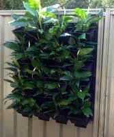 Versiwall Vertical Gardens In Perth And Western Australia Vertical Vegetable Gardens Vertical Garden Pots Vertical Garden Wall