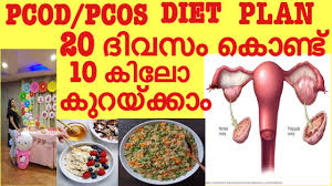 pcod pcos weight loss t plan lose