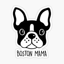 Boston Terrier Stickers Redbubble