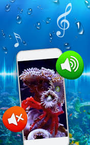 خلفيات اسماك متحركة للموبايل For Android Apk Download