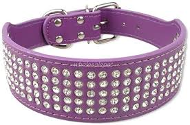dog collars bling diamante crystal