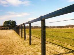 Fencing Choices For Paddocks Horse Ideology