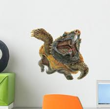 Alligator Snapping Turtle Wall Decal Wallmonkeys Com