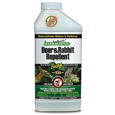 Liquid Fence Concentrate 40 Ounce Fencing Jung Seed Company