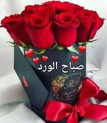 ورد Rose صباح النور والسرور صباح النور وعطر الزهور Facebook