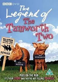 Amazon.com: The Legend of the Tamworth Two [Region 2]: Gerard ...