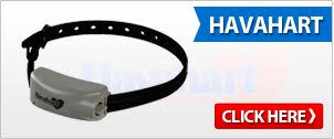 Electric Dog Fence Collars