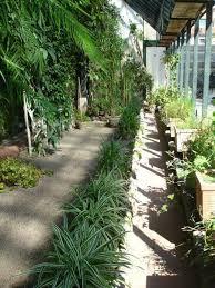 jardins de agharta jardim botÂnico de