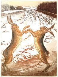 boxing hares original etching and