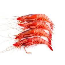 Mmmediterranean Alistado Red Shrimp Box ...