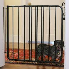 Cardinal Gates Auto Lock Pet Gate Gates Petsmart Dog Gate Pet Gate Indoor Dog Gates