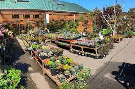 sloat garden center 236 photos 176