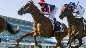 Caulfield Cup 2020: Leon Macdonald to ...