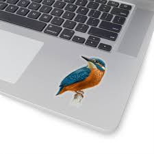 Kingfisher Bird Sticker Nature Animals Tropical Laptop Decal Vinyl Cu Starcove Fashion