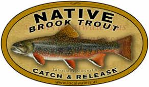 Localwaters Native Brook Trout Decal Catch Release Fishing Sticker Localwaters