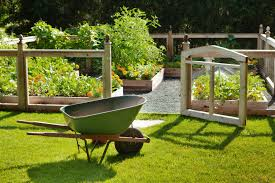 6 Steps To Protect Your Vegetable Garden From Groundhogs Kellogg Garden Organics