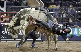 bull riding bullrider cowboy