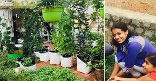 lady grows 34 veggies fruits