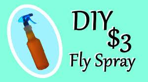 diy fly spray recipe 3 fly spray
