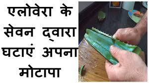 aloe vera juice weight loss in hindi