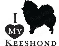 Vinyl Dog Decal Keeshond Doggie Decal Animal Sticker Etsy