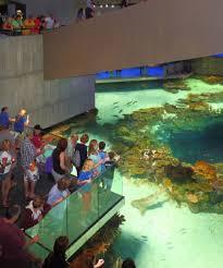 jfm national aquarium
