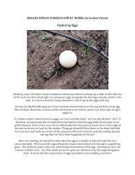 Reggio Emilia Curriculum at Work in Gesher Ocean: Exploring Eggs | Reggio  emilia, Reggio emilia preschool, Reggio