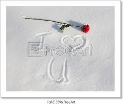 free art print of i love you snow rose