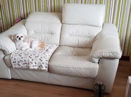 sisi italia 2 seater sofa in ipswich