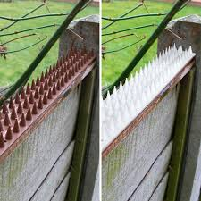 Anti Climb Spikes Fence Wall Security Spikes Bird Cat Repellent Prickle Strips Ebay
