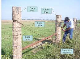 Fence Example 5 Wire Barbed Storing Posts Before Use If Posts Are Left Lying On The Ground They Are Prone To Rot And Insect Damage Ppt Download