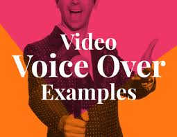video voice over exles biteable
