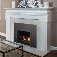 napoleon oakville direct vent fireglass
