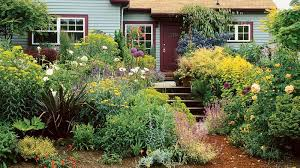 growing an english cottage garden